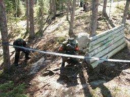 5 tapaa piristää vanhaa metsäkenttää