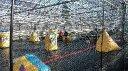 Polar Paintball Games Reball Arena avattu
